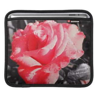 Romantic Red Roses iPad Sleeve
