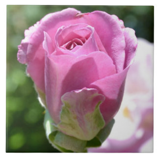 Romantic Rose Bud Ceramic Tile