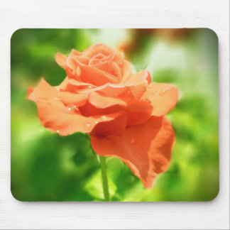 Romantic Rose Flowers #2 Mouse Pad