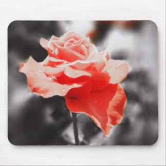 Romantic Rose Flowers #3 Mouse Pad