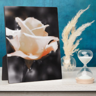 Romantic Rose Flowers Plaque