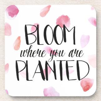 Romantic Rose Petals Bloom Beverage Coaster