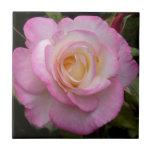 Romantic Rose Tiles