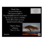 Romantic Safari Africa Bridal Thank You Cards Post Cards