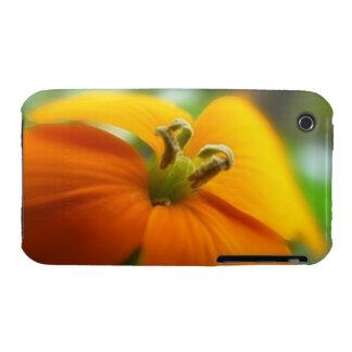 Romantic Siberian Wallflower Bloom Case-Mate iPhone 3 Cases