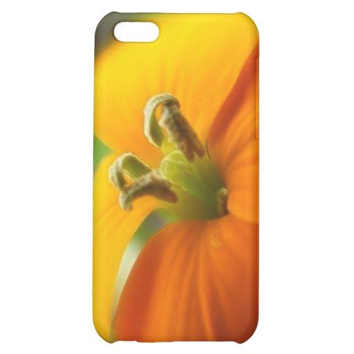 Romantic Siberian Wallflower Bloom Case For iPhone 5C