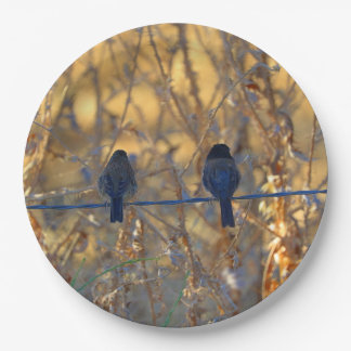 """Romantic sparrow bird couple on a wire, 9"""" Photo Paper Plate"""
