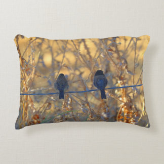 Romantic sparrow bird couple on a wire, Photo Accent Pillow
