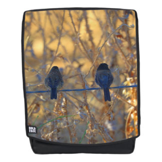 Romantic sparrow bird couple on a wire, Photo Backpack