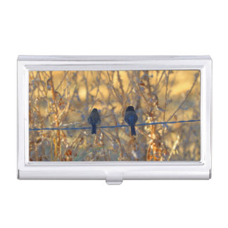 Romantic sparrow bird couple on a wire, Photo Case For Business Cards