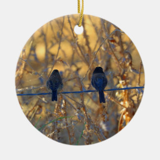 Romantic sparrow bird couple on a wire, Photo Ceramic Ornament