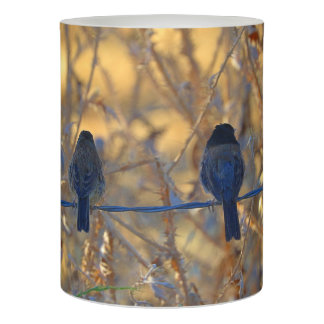 Romantic sparrow bird couple on a wire, Photo LED Flameless Candle