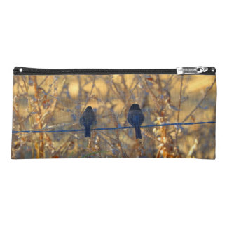 Romantic sparrow bird couple on a wire, Photo Pencil Case