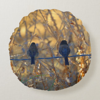 Romantic sparrow bird couple on a wire, Photo Round Pillow