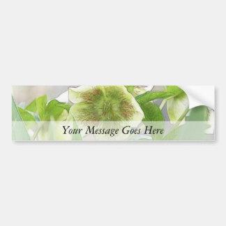 Romantic Spring Flowers - Hellebores Bumper Stickers