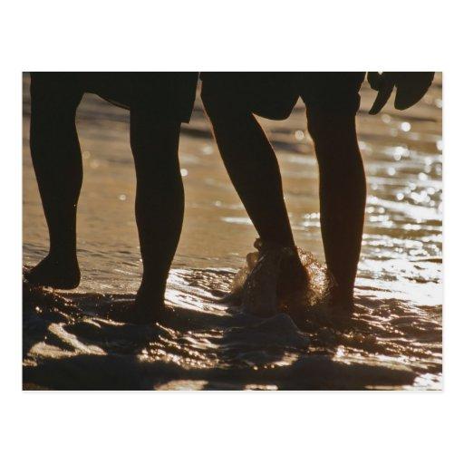 Romantic Stroll Postcard