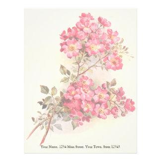 Romantic Vintage Pink Roses Letterhead