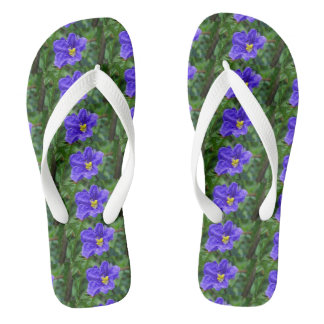 romantic water color relax vacation beach flip flops