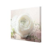 Romantic White Rose Canvas Print