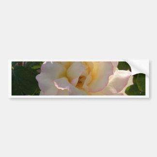 Romantic White Rose CricketDiane Bumper Sticker