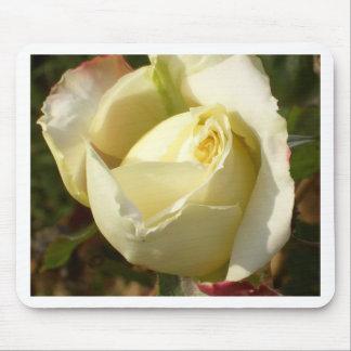 Romantic White Rosebud CricketDiane Roses Mouse Pads