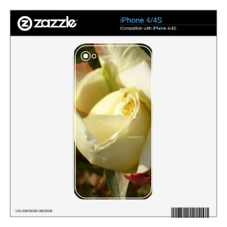 Romantic White Rosebud CricketDiane Roses Decals For The iPhone 4