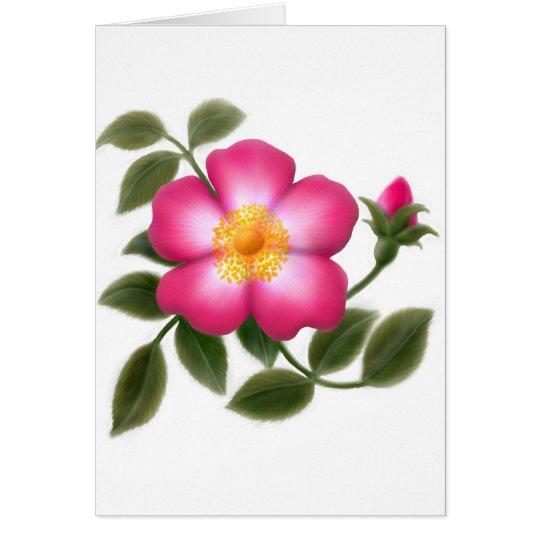 Romantic Wild Rose Card