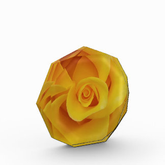 Romantic Yellow Rose Petals Award