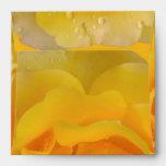 Romantic Yellow Rose Water Drops Envelope