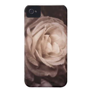 Romantica- this rose says love iPhone 4 Case-Mate cases