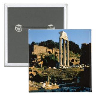 Rome, Foro Romano, 1956 Pins