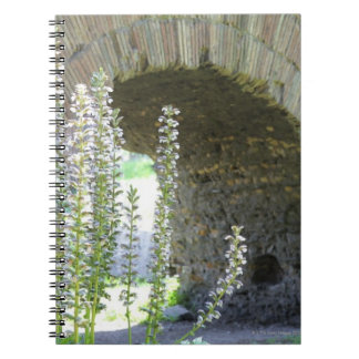 Rome, Italy 2 Spiral Notebook