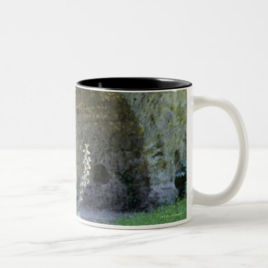 Rome, Italy 2 Two-Tone Coffee Mug