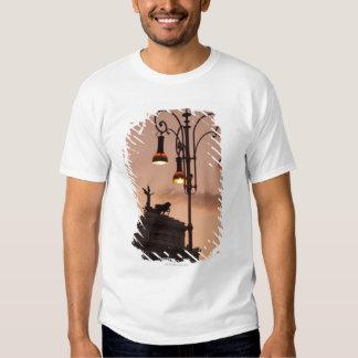 Rome, Italy 9 T Shirt