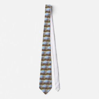 Rome, the eternal city. neck tie