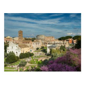 Rome - View of the Forum Romanum postcard No.2