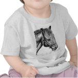 Romeo Camisetas