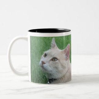 Romeo The Cat Coffee Mug