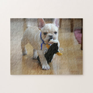 Romeo the French Bulldog Puzzle