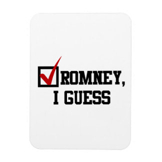 Romney, I guess Rectangle Magnets