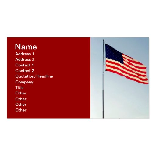 Romney Political Networking Business Card