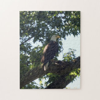 Rompecabezas americano de Eagle calvo
