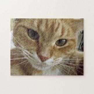 Rompecabezas anaranjado del gato de Tabby