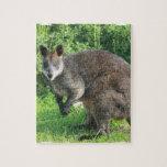 Rompecabezas australiano del canguro