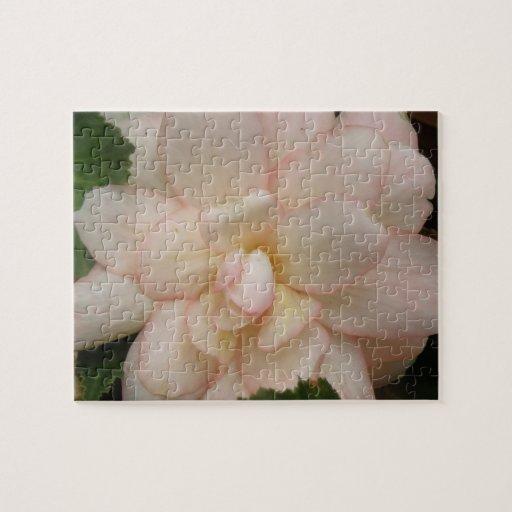 Rompecabezas blanco de la flor de la begonia