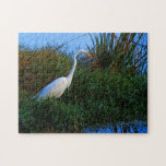 Rompecabezas blanco del Egret