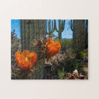 Rompecabezas - cactus - flores - Arizona