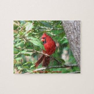 Rompecabezas cardinal masculino rojo