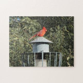 Rompecabezas cardinal