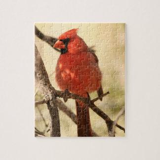 Rompecabezas cardinal rojo